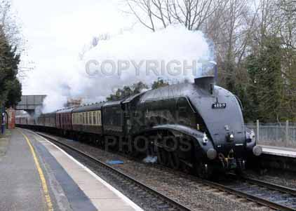 Purchase photograph of 60019 BITTERN at Aldermaston
