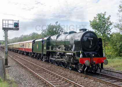 46100 ROYAL SCOT