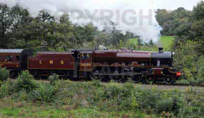 Purchase posters of 45690 LEANDER
