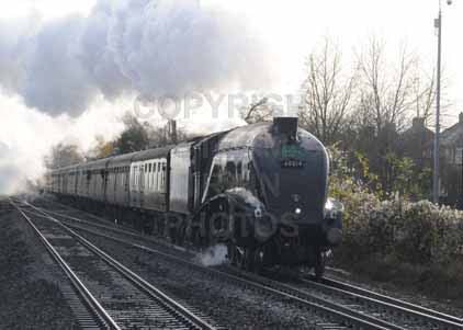 Purchase photo of 60019 BITTERN at Tilehurst